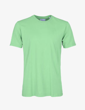 Tee shirt faded mint