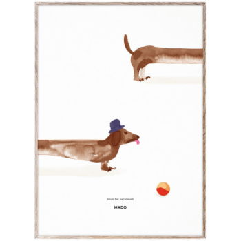 Affiche doug the dachshund 50 x 70 cms
