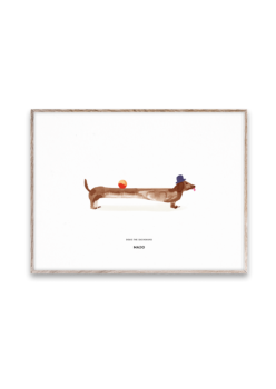 Poster doug the dachsund 30 x 40 cms
