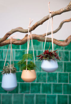 Suspension plantes bleu pastel